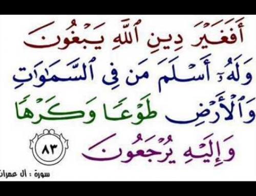 تفسیر آیه ی ۸۳ سوره ی مبارکه ی آل عمران